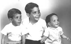 The 65 Roses Story - The Weiss brothers, Richard, 5; Arthur, 7 and Anthony, 16 months